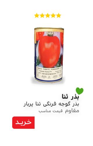 بذر گوجه فرنگی ثنا