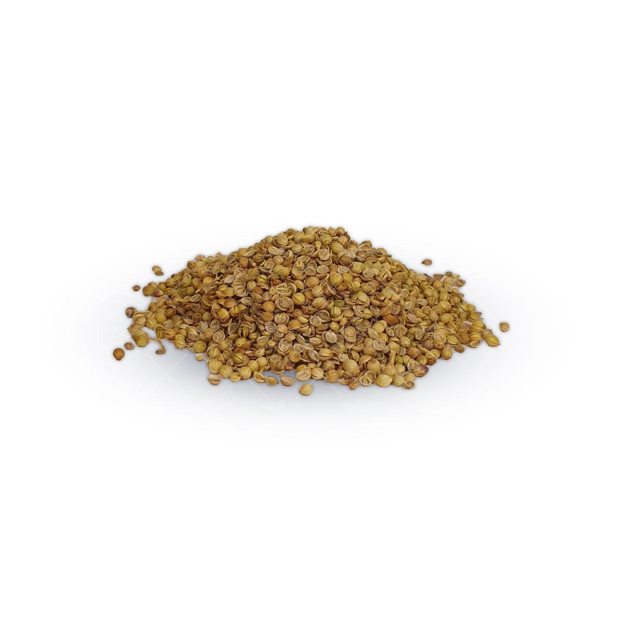 بذر سبزی گشنیز نیم کیلویی ایرانی