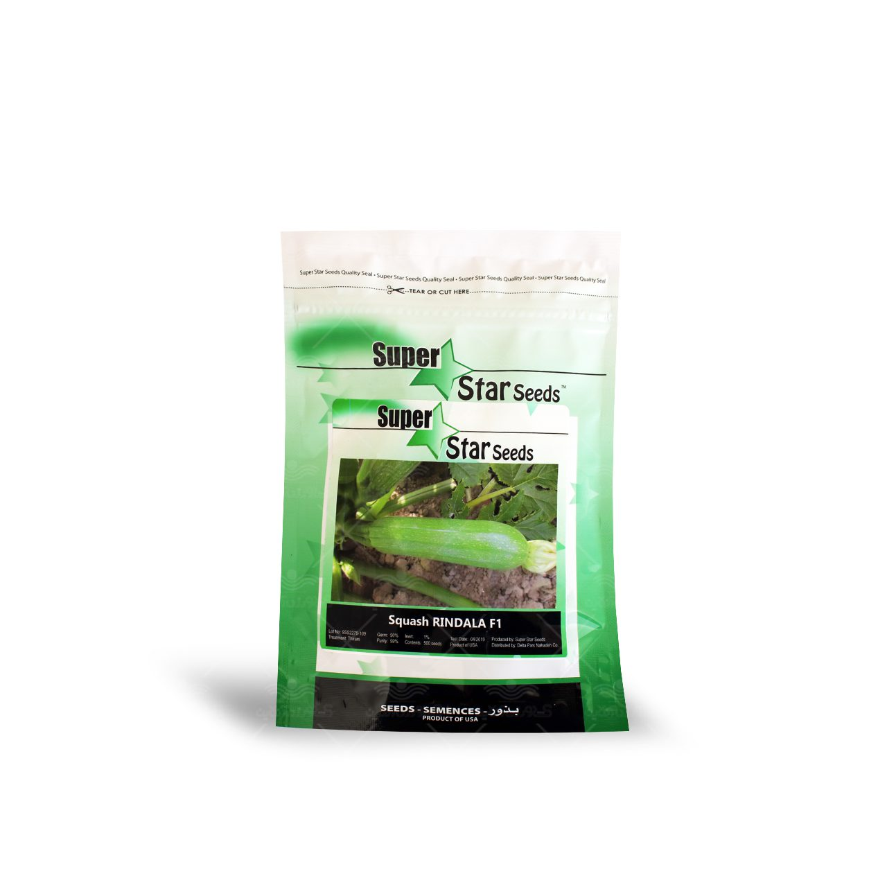 بذر کدو سبز خورشتی هیبرید ریندالا