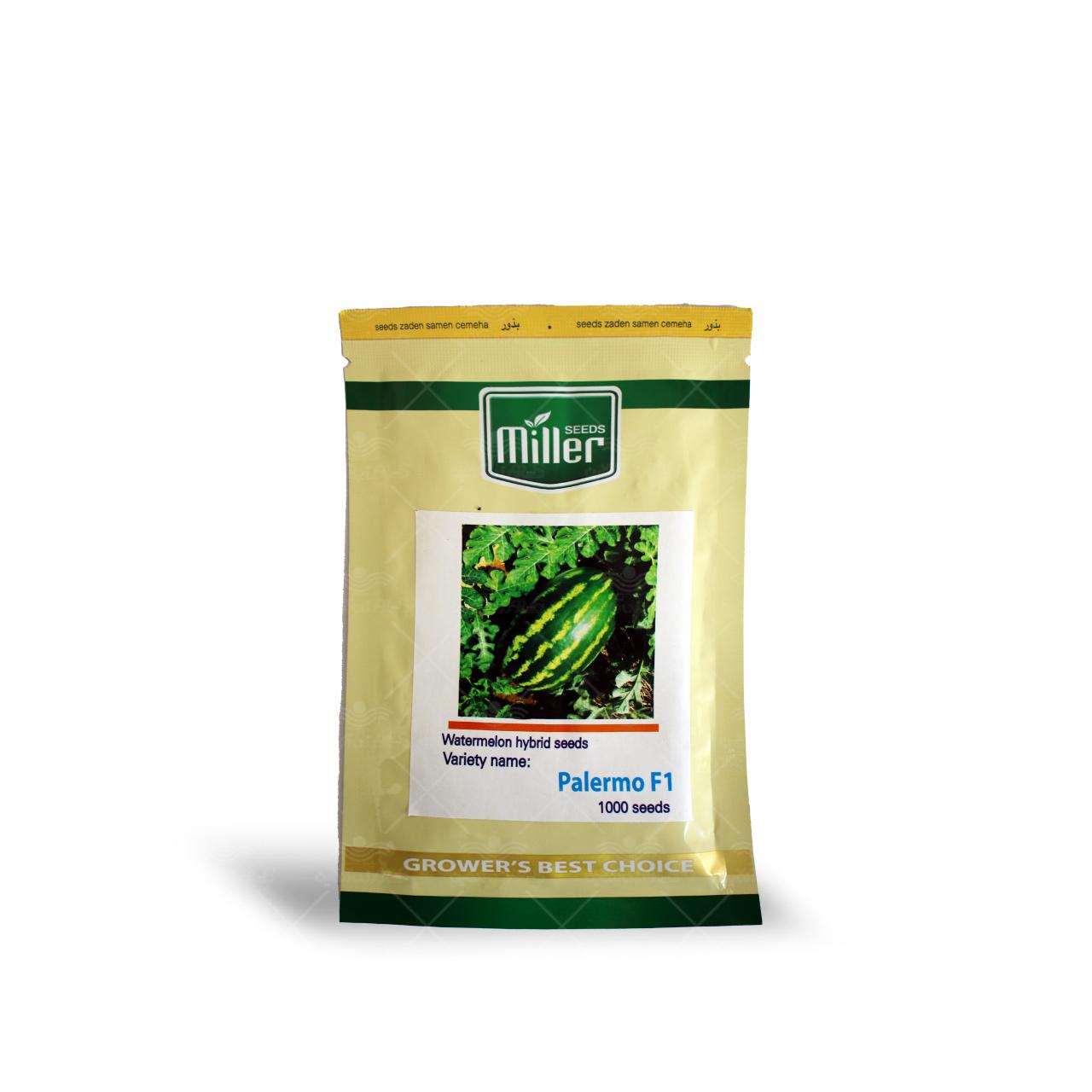 بذر هندوانه کریمسون سوییت کشیده پالرمو تیپ ب 32