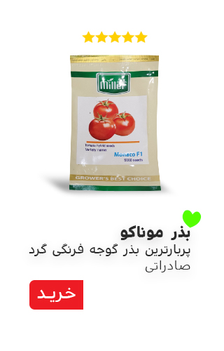 بذر گوجه موناکو