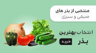فروش بهترین بذر صیفی و سبزی
