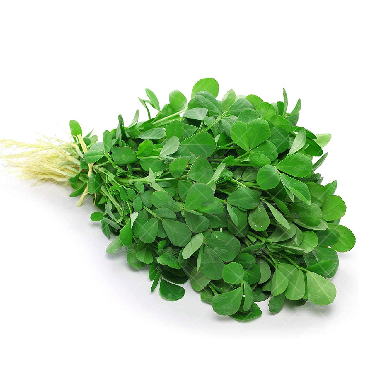 بذر سبزی شنبلیله