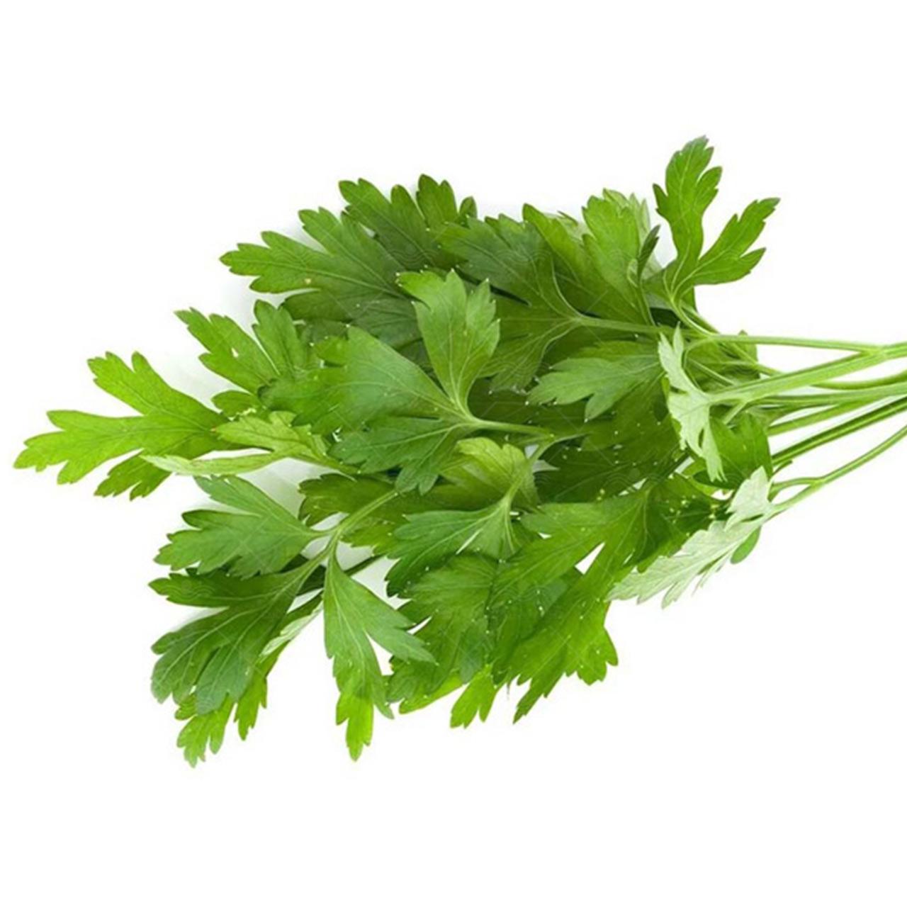 بذر سبزی جعفری
